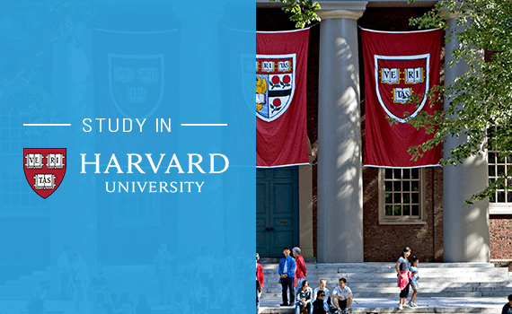 Why study in Harvard University?