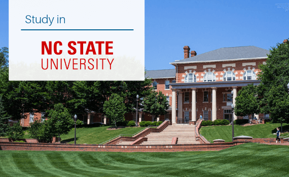 Why study in NCSU?